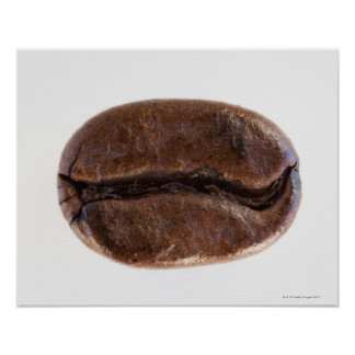 Roast coffee bean, studio shot poster