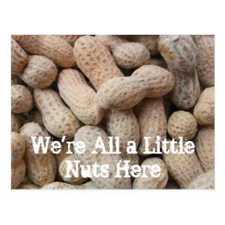 Roasted Salted Peanuts in the Shell Postcard