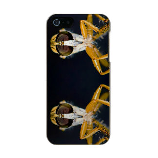 Robber Flies - Efferia albibarbis Metallic iPhone SE/5/5s Case