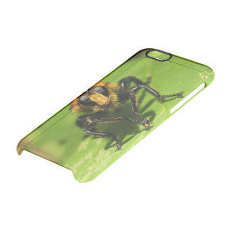 Robber Fly Clear iPhone 6/6S Case