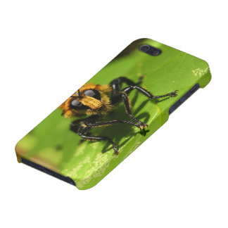 Robber Fly iPhone SE/5/5s Cover