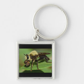 Robber Fly with Lunch Keychain