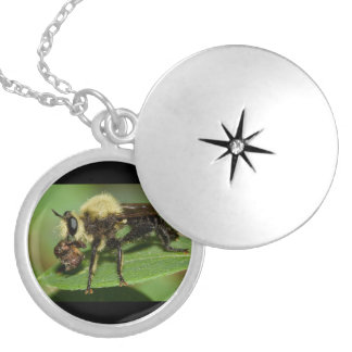 Robber Fly with Lunch Round Locket Necklace