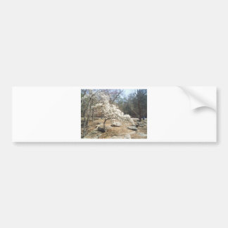 Robbers cave bumper stickers