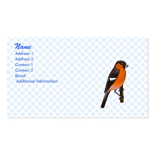Robbie Robin Business Card Template