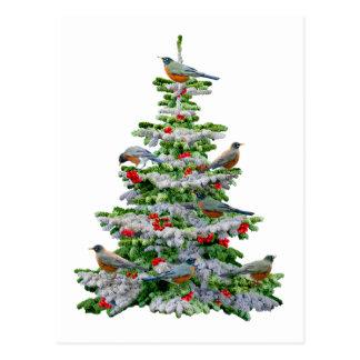 Robbin Tree Postcard