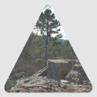 Robers Cave State Park Triangle Sticker