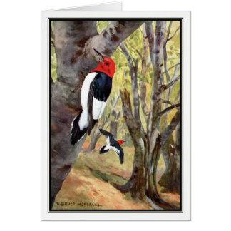 Robert Bruce Horsfall - Red-Headed Woodpecker Card