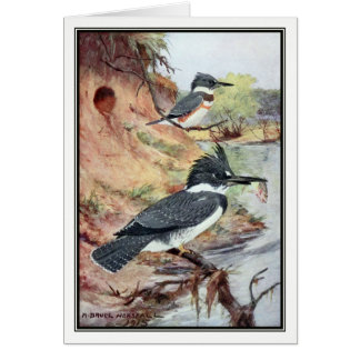 Robert Bruce Horsfall - Vintage Belted Kingfisher Card