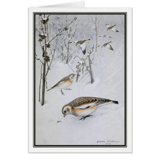 Robert Bruce Horsfall - Vintage Snow Bunting Card