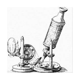 Robert Hooke's Microscope Gallery Wrapped Canvas