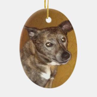 Robert Hoynes Tribute Ornament #6