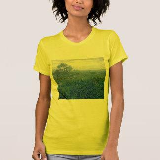 Robert Julian Onderdonk a-cloudy-day-bluebonnets T-Shirt