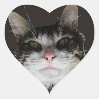 Robert the Cat Heart Sticker