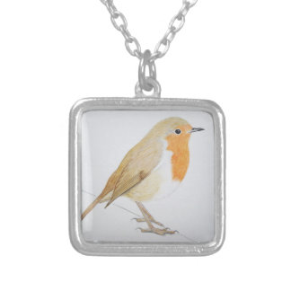 Robin 2011 silver plated necklace