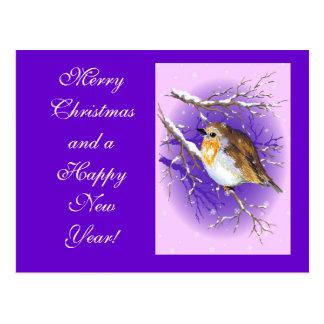 Robin 3 postacard postcard