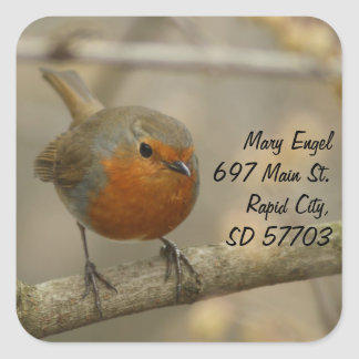 robin address label