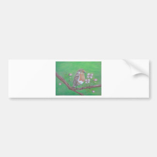 Robin Bird Bumper Sticker