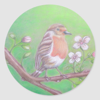 Robin Bird Classic Round Sticker