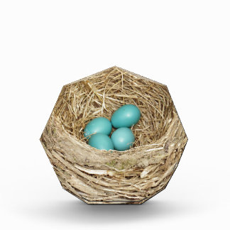 Robin Bird Egg Nest Acrylic Award