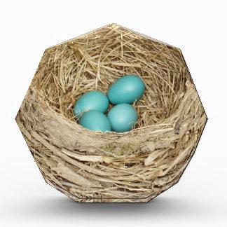 Robin Bird Egg Nest Award
