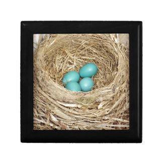 Robin Bird Egg Nest Keepsake Box