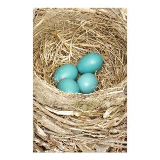 Robin Bird Egg Nest Stationery