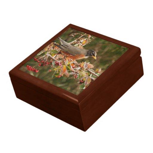 robin bird gift box zazzle