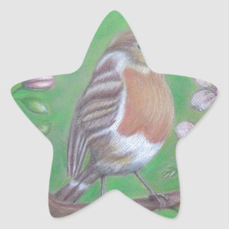 Robin Bird Star Sticker