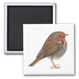 Robin Bird Watercolor Painting Artwork Redbreast Magnet