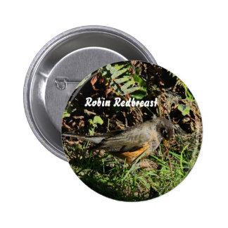 Robin Bird Wildlife Animal Photography Button