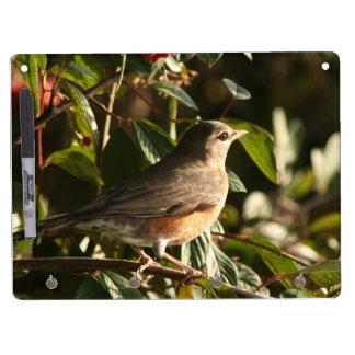 Robin Bird Wildlife Animal Photography Dry Erase Board With Keychain Holder