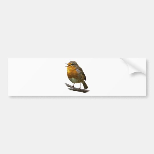 Robin Bumper Sticker