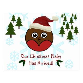 Robin Christmas Birth Announcement Postcard