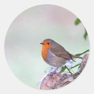 Robin Classic Round Sticker