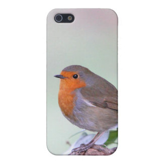 Robin  cover for iPhone SE/5/5s