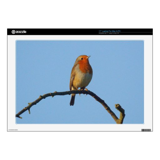 Robin Decal For Laptop