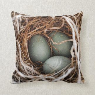 Robin Egg Blue Bird Nest Spring Mother Pillow