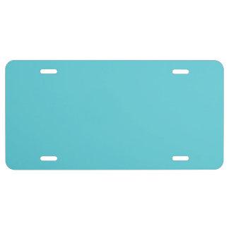 """""""Robin Egg Blue"""" License Plate"""