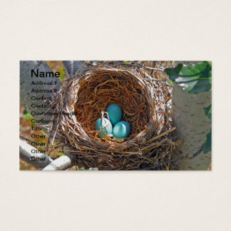 Robin Eggs in a Backyard Tree Nest Business Card
