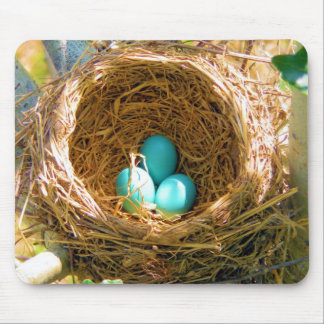Robin Eggs in a Backyard Tree Nest Mouse Pad