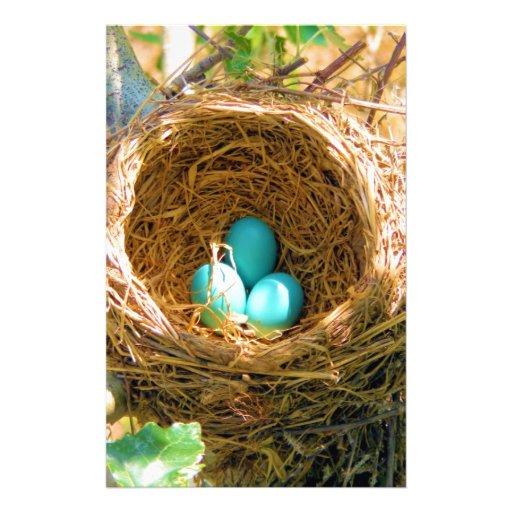 Robin Eggs in a Backyard Tree Nest Stationery