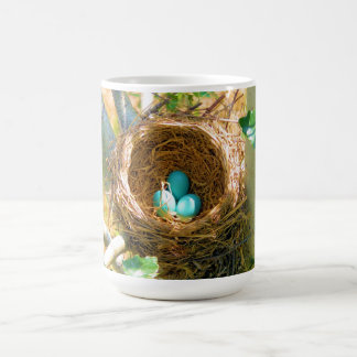 Robin eggs unhatched in a backyard tree nest classic white coffee mug