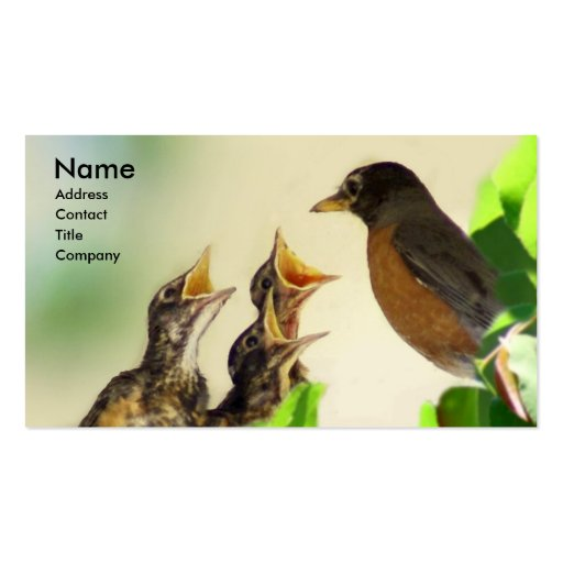 Robin Family Business Card Template