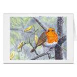 Robin greetings card