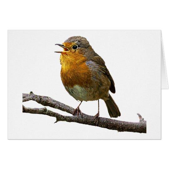Robin Horizontal Card
