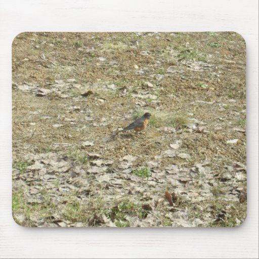 Robin in Dried Leaves Mouse Pad