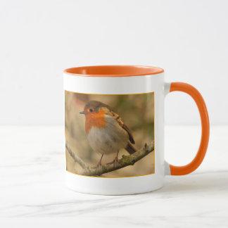Robin in Sunshine Mug