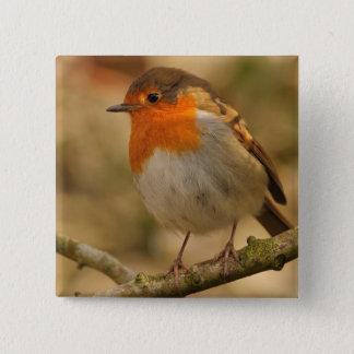 Robin in Sunshine Pinback Button