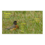 Robin in the Grass Business Card Templates